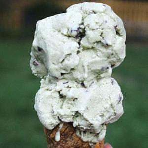 autoimmune friendly mint chip ice cream on myheartbeets.com