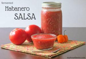 Habanero Salsa (fermented)