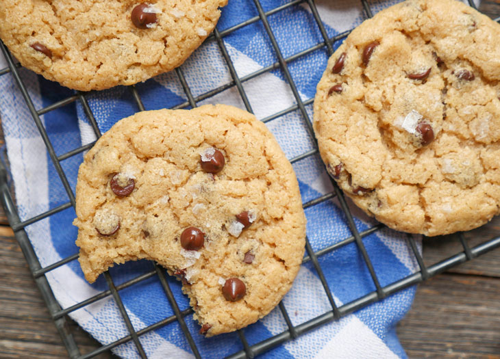 The Best Gluten Free Chocolate Chip Cookies (flourless, grain-free, paleo)